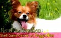 Remi the Papillon: Shell Game Genius and Doggie Star - P1/2 (In Korean)