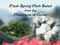 Fresh Spring Herb Salad from the Mountains of Korea (In Korean)